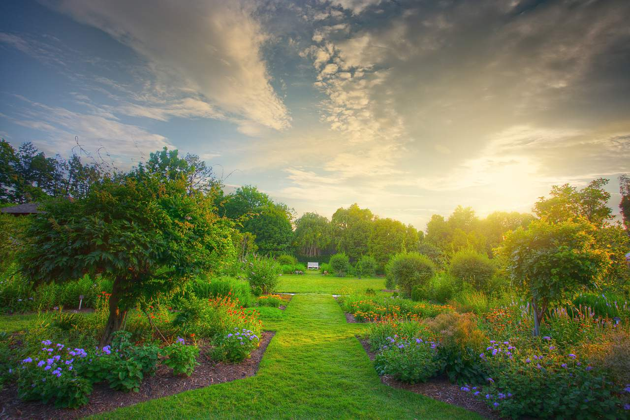 fertilized garden