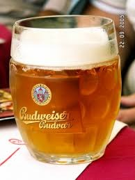 large Czech beer glass